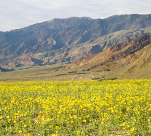 climate_control_death_valley