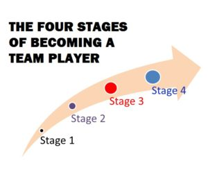 four stages of becoming a team player