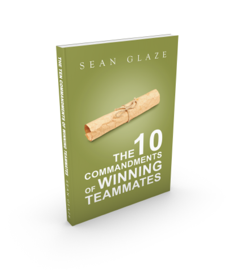commandments teammates books for great results team building